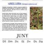 calendari-2015_2